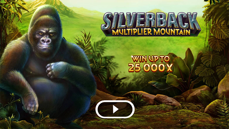 Silverback Multiplier Mountain – Slot Game With Highly Realistic Images Of Different Animals